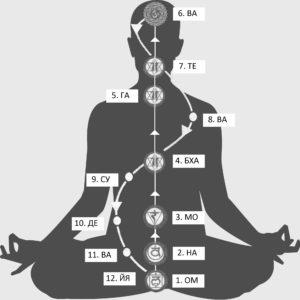 tribhanga-kriyya-telo-s-liniyami
