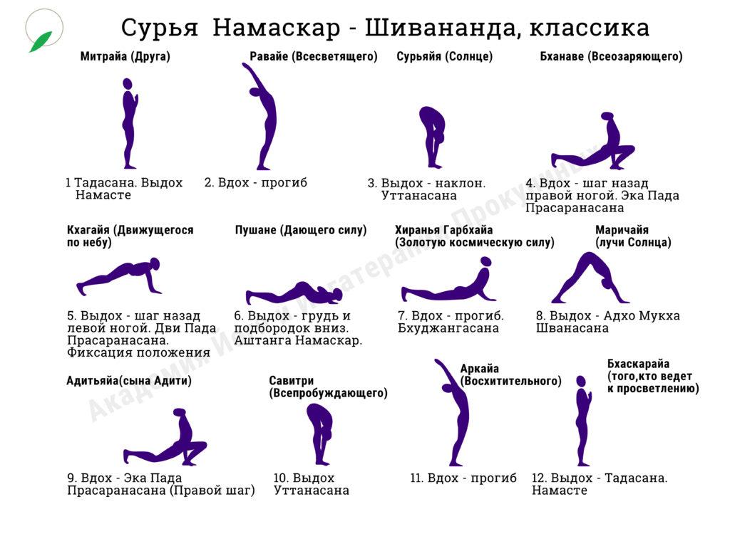 Сурья Николай Шивананда big