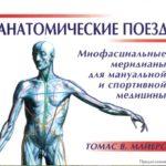 Анатомические поезда Майерса