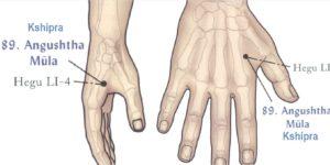 Марма-терапия Йогатерапия сердечно-сосудистых заболеваний-Angushtha-Mula-Kshipra